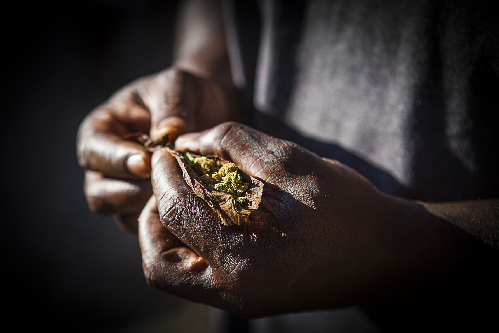 Legalized It.  Close up photograph of a man rolling a joint